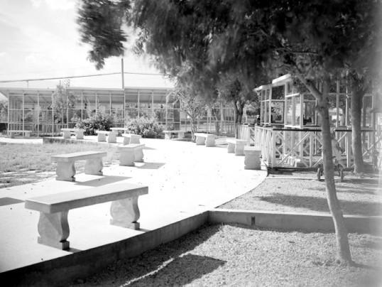 Parque Zoológico Santiago de Cuba 1950